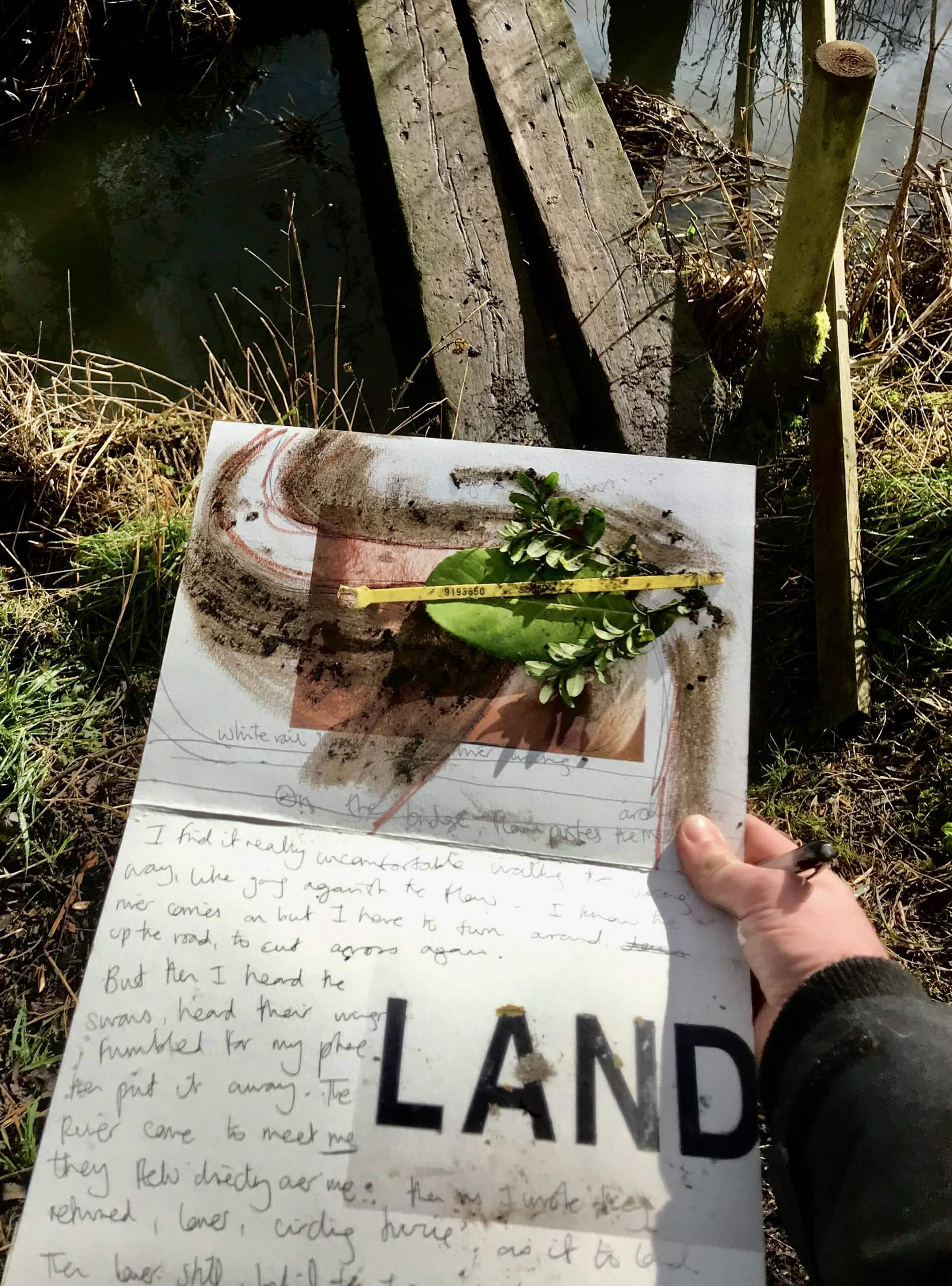 A person is holding a piece of paper with piece with text, including the word 'LAND' in large and capitals. There are leaves and dirt on the paper. The setting is a forest.